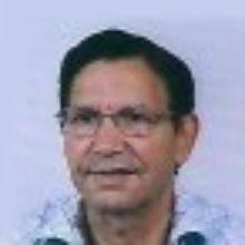 Manuel João da Silva